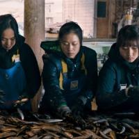 【5月1日日本公開】日本・ベトナム共同製作映画「海辺の彼女たち」<技能実習生のリアル>本編映像一部解禁